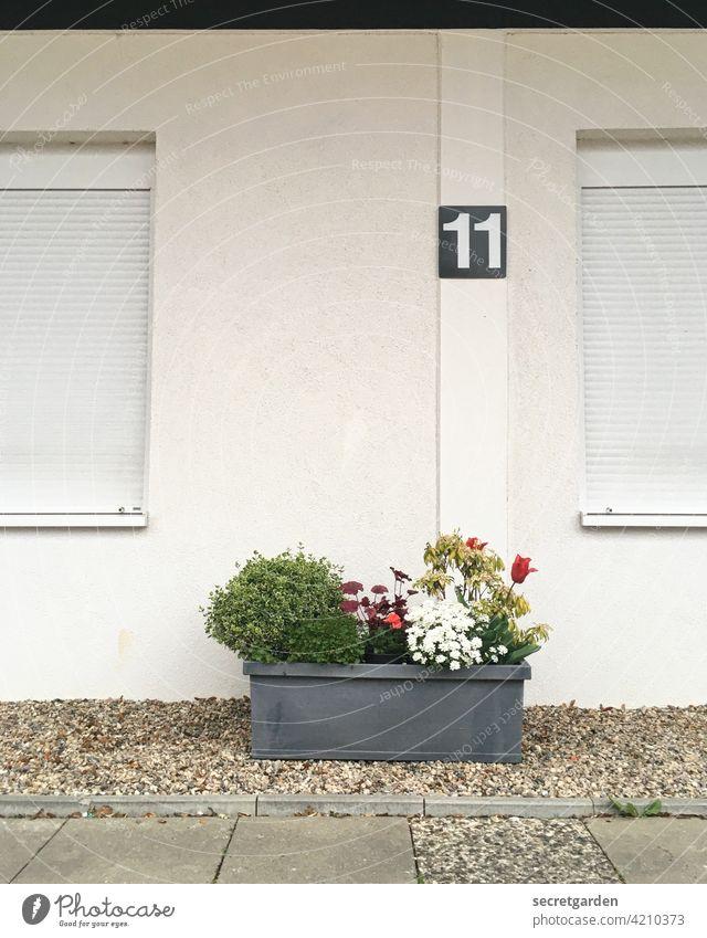 Die Macht der Gewohnheit spießig Deutsch Ordnung Außenaufnahme Menschenleer Sauberkeit Wand Ordnungsliebe Tag Fassade Reinlichkeit Farbfoto Architektur