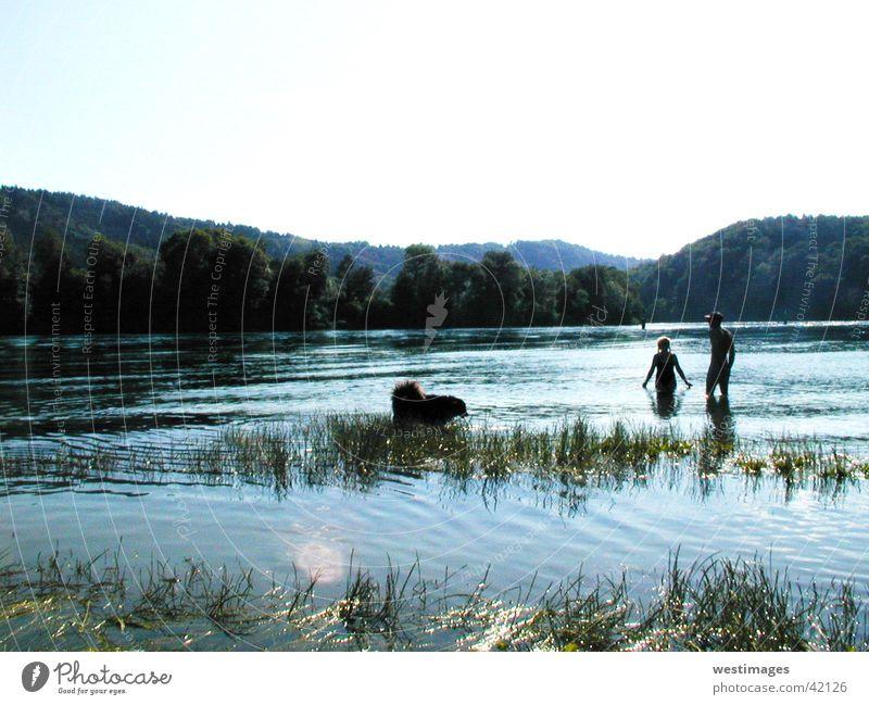 Flußspaziergang Mensch Wasser Sommer Hund Wärme Fluss Spaziergang Physik Schwimmen & Baden
