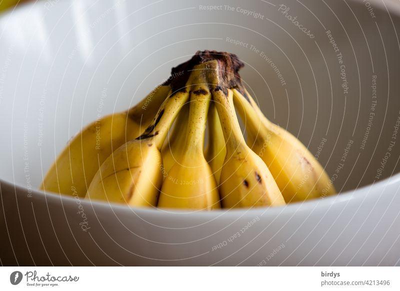 Bananen in einer Schüssel reif Frucht Ernährung Gesunde Ernährung Lebensmittel Obst Bioprodukte Vegetarische Ernährung süß Desertbanane Gesundheit Obstschale