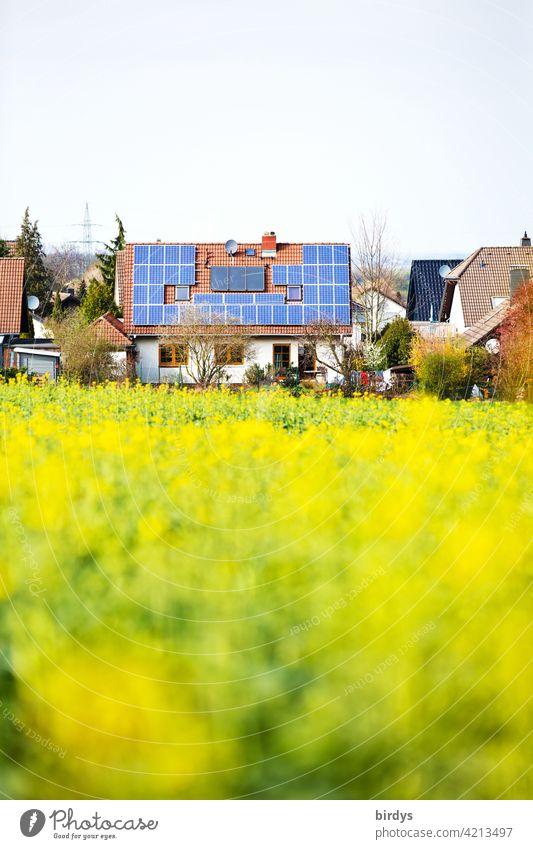 Photovoltaikanlage und thermische Solaranlage auf dem Dach eines am Ortsrand gelegenen Einfamilienhauses mit angrenzendem Rapsfeld PV-Anlage Stromgewinnung