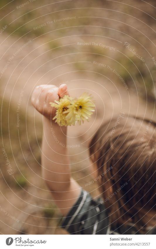 Kind mit Blumen in der Hand Natur Pflanze Blüte Garten Farbfoto schön Blühend Außenaufnahme gelb Umwelt Hand erhoben Arme