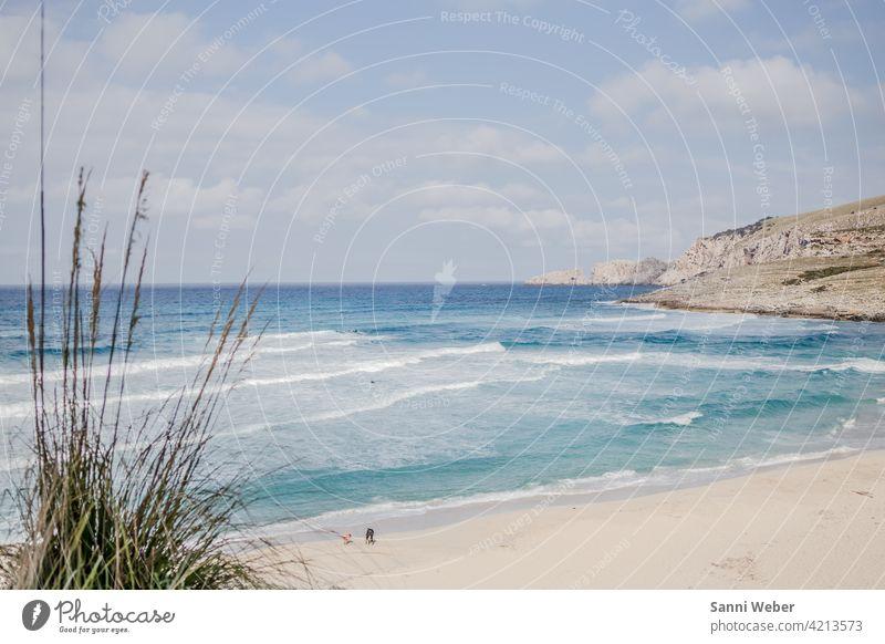 Strand von Cala Mesquida auf Mallorca Meer Sand Wasser Wellen Sonne Himmel Ferien & Urlaub & Reisen Schönes Wetter Küste Außenaufnahme Farbfoto Natur
