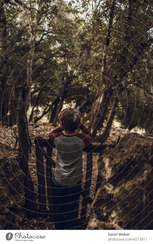 Kind am Zaun im Wald Mensch Außenaufnahme Farbfoto Natur Kindheit Tag Baum Junge Umwelt Spielen
