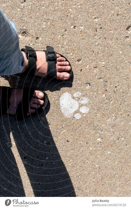 Blick auf eine gesprühte Schablone eines Hundepfotenfußabdrucks auf dem Gehweg; Person mit Sandalen steht in der Nähe und wirft einen Schatten Pfote