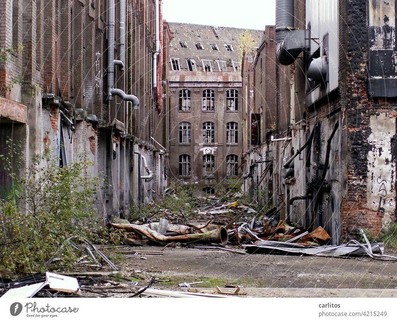 Contigelände Hannover | lang ist es her Limmer Industrie Verfall Ruine Fabrik Gebäude verfallen alt kaputt Vergänglichkeit Zerstörung Fenster Vergangenheit
