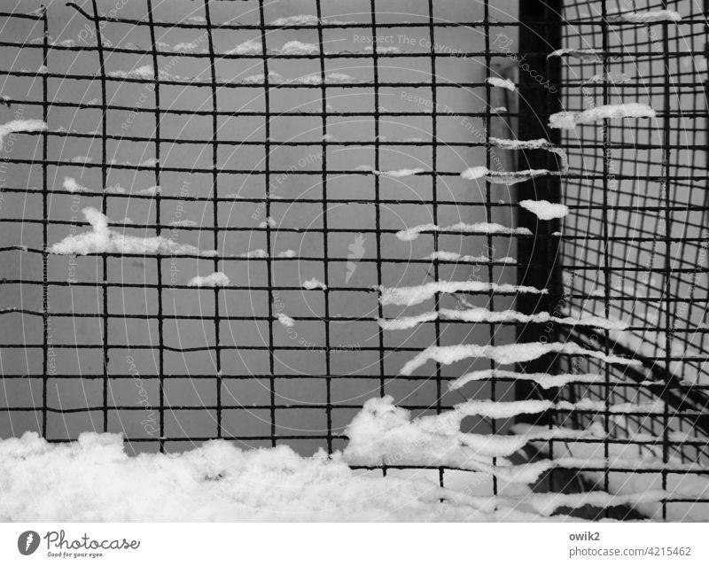 Kühlbox Detailaufnahme Zaun Metall Gitterzaun Maschendraht Schnee Durchblick Schutz Sicherheit Winter Menschenleer Barriere Außenaufnahme Strukturen & Formen