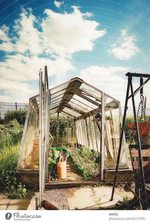 Alles offen Garten Gartenarbeit Gewächshaus Außenaufnahme Farbfoto Frühling Landschaft Freizeit & Hobby Totale Sonnenlicht Tag Textfreiraum oben