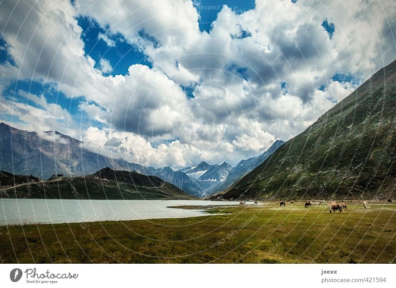 V-Ausschnitt Himmel Natur Ferien & Urlaub & Reisen blau schön grün weiß Sommer Einsamkeit Erholung Landschaft ruhig Wolken schwarz Berge u. Gebirge Umwelt