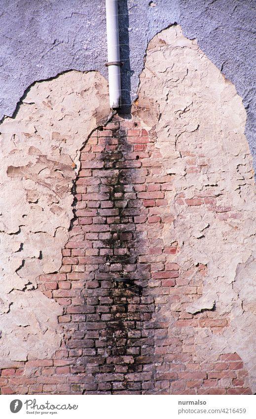 Bauschäden Zauberstab Schaden Wasser Altbau schimmel sanierung Putz Ziegel verwittert alt Regeneration regenrohr abriss Ruine