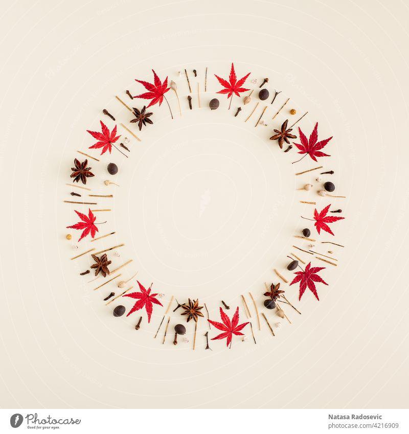 Kreatives Layout mit Blättern und Zweigen in einem Kreis auf einem cremefarbenen Hintergrund. Abstrakte Vision in einem minimalistischen Stil abstrakt kreisen