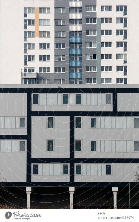 Leben in Schachteln Muster Einsamkeit grau Fenster Beton Linie Häusliches Leben Fassade Wand Mauer Architektur Bauwerk Menschenleer Hochhaus Haus