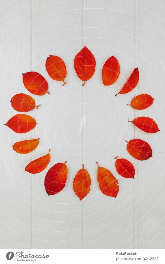 #A0# Herbstkreis herbstlich Herbstlaub Herbstfärbung Herbstbeginn Herbststimmung Blätter rot orange Natur