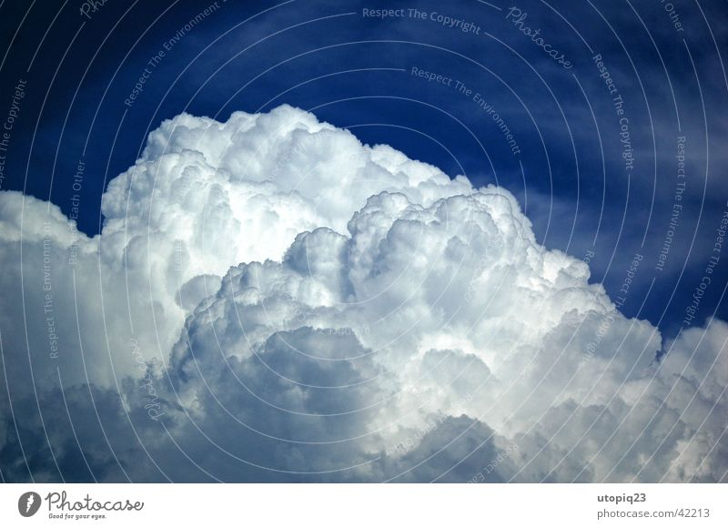Cumulonimbus Natur Himmel blau Sommer Wolken Regen Wetter Gewitter