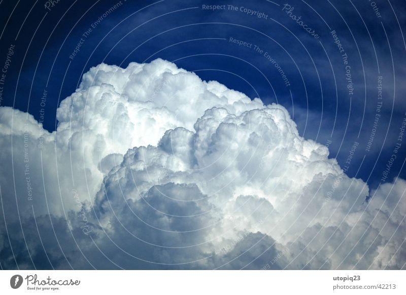 Cumulonimbus Wolken Sommer Natur Himmel Gewitter blau Regen Wetter clouds weather . blue rain sky