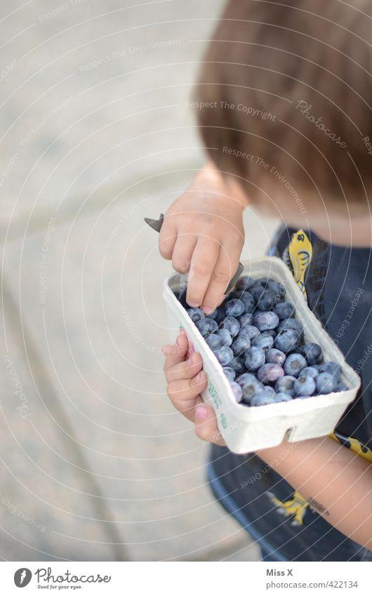 Blaubeeren Frucht Ernährung Essen Bioprodukte Vegetarische Ernährung Mensch Kind Kleinkind Kindheit 1-3 Jahre 3-8 Jahre frisch Gesundheit lecker saftig süß blau