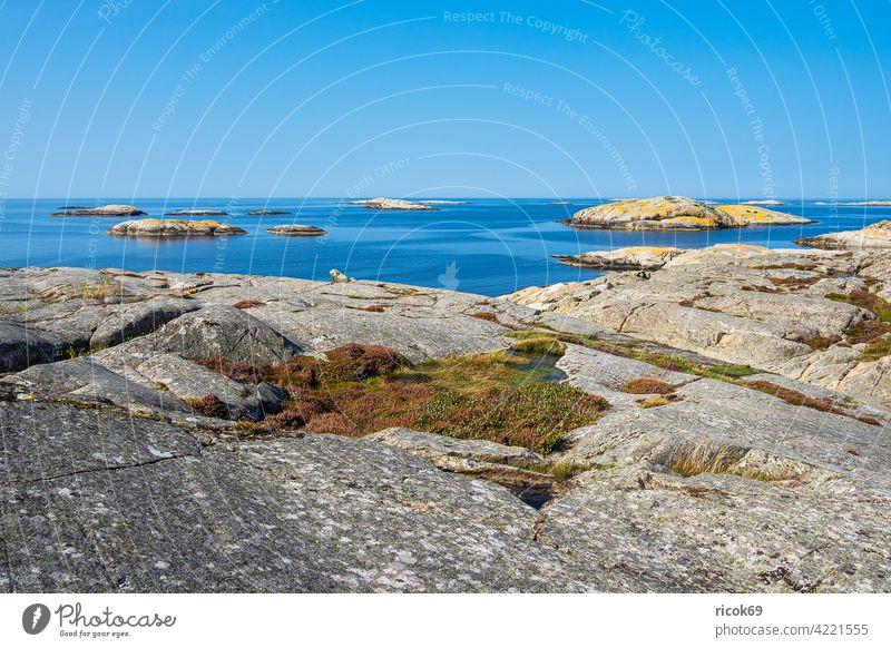 Felsen auf den Wetterinseln vor der Stadt Fjällbacka in Schweden Schären Schärengarten Meer Küste Nordsee Skagerrak Insel Schäreninsel Wasser Tourismus Himmel