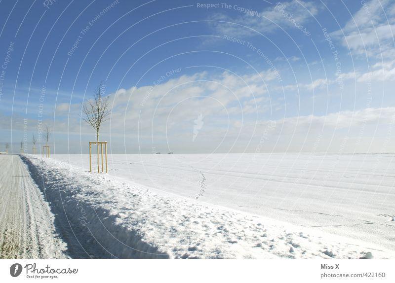 Wintertag Landschaft Himmel Klima Wetter Schönes Wetter Eis Frost Schnee Verkehr Verkehrswege Straße hell kalt weiß Winterdienst Verkehrssicherheit Schneewehe
