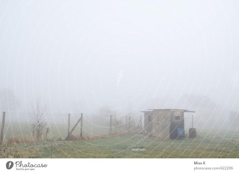 Heulendes Hüttchen Wetter schlechtes Wetter Nebel Regen Garten Dorf Stadtrand Menschenleer Hütte kalt nass Gefühle Stimmung Einsamkeit Endzeitstimmung Verfall
