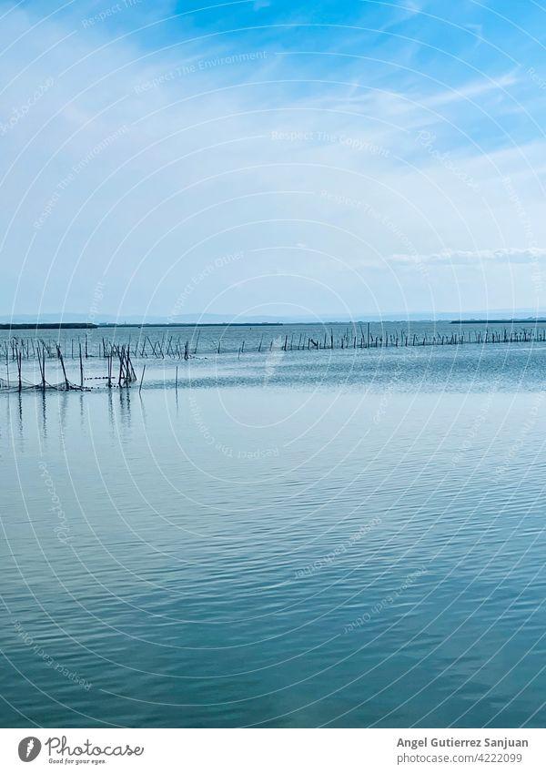 Horizont mit Himmel und Meer mit blauem Farbverlauf MEER Wellen Ostsee Natur Wasser Strand Sommer Küste Ferien & Urlaub & Reisen Erholung Sommerurlaub