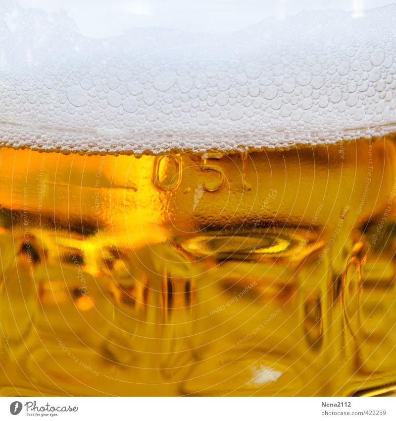 Einstieg in Wochenende Getränk Erfrischungsgetränk Alkohol Bier Glas Ferien & Urlaub & Reisen Nachtleben Bar Cocktailbar trinken Billig lecker gelb gold