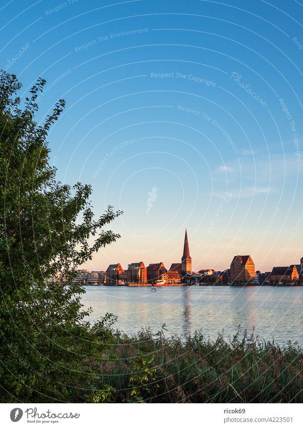 Blick über die Warnow auf die Hansestadt Rostock Fluss Stadthafen Mecklenburg-Vorpommern Schilf Baum Tourismus Architektur Häuser Gebäude Wahrzeichen Kirche