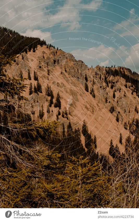 Bergblick | Bayrischzell | Soinsee outdoor soinsee wandern bayerischzell oberbayern alpen berge frühling gipfel himmel wolken warme farben idylle sonne