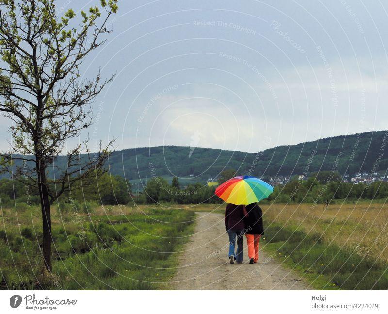 gut beschirmt - Rückansicht von zwei Personen unter einem bunten Regenschirm auf einem Weg im Moor Menschen Rücksansicht Schirm Landschaft Natur Moorlandschaft