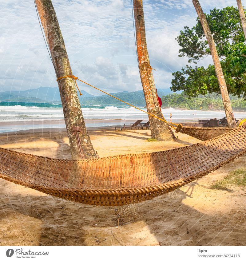 Blick aus einer Hängematte in der Nähe von Ozean Strand tropisch Handfläche reisen Urlaub MEER Meer Paradies Sommer Resort Wasser Insel Sand Landschaft Himmel