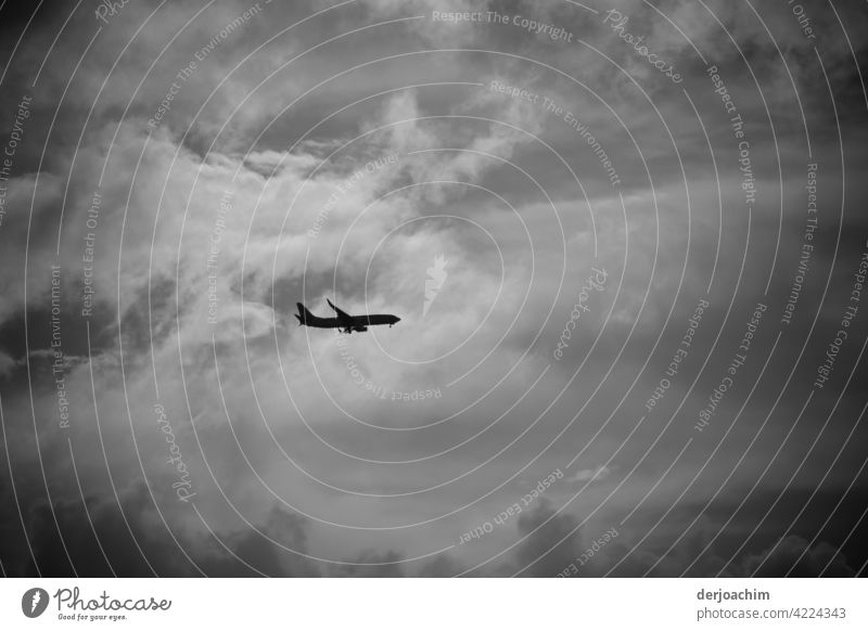 Und sie fliegenwieder. Ein Passagierflugzeug auf dem Weg nach dem Gold Coast Airport. Nach einem kurzen Schlenker über den Pacific. Die Landeklappen sind schon ausgefahren. Das Wetter ist bescheiden..