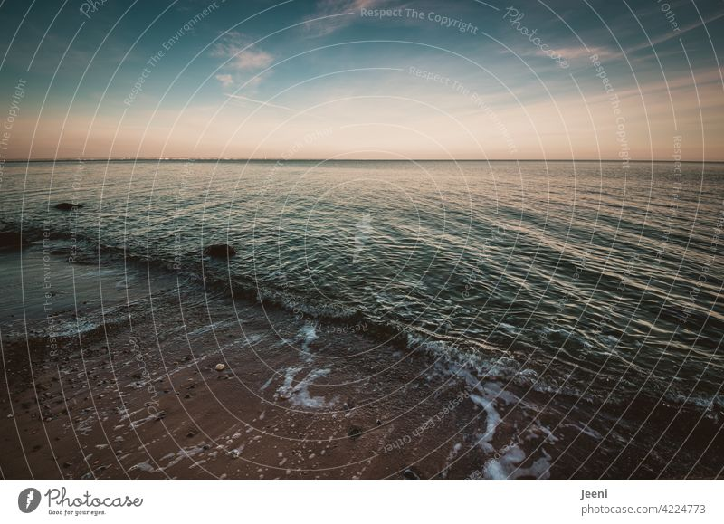 Sogwirkung   Meeresströmung der Ostsee Ostseeküste Steilküste Küste strömen Strömung Küstenlinie Blick Blick nach vorn weiter Blick Ferne Fernweh blau