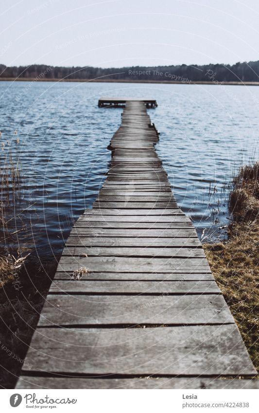 Gehen Sie auf dem Wasser! kalt Wind blau Kaltwasser Herbst Holzplatte Möbel Brücke Fluss See Gras Stille Herbstspaziergang in Wassernähe Wald Bäume
