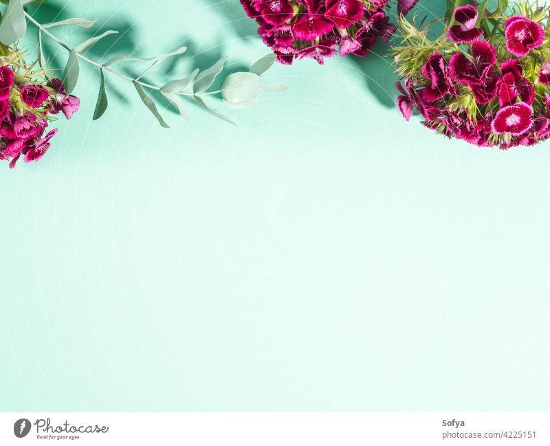 Pastellgrüner türkisfarbener Hintergrund mit rosa Blumen Frau Attrappe Valentinsgruß Mutter Tag Ostern Frauentag geblümt Design Pflanze Sommer abstrakt Farbe