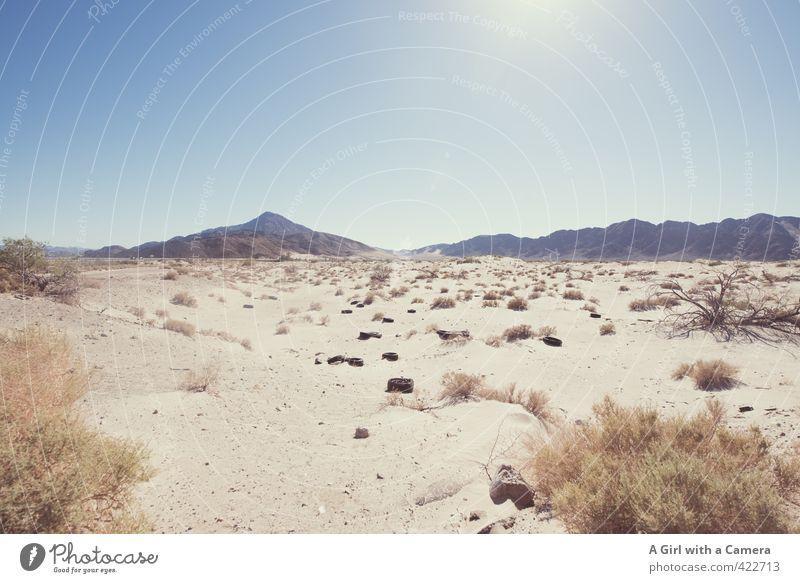 Wüste Umwelt Natur Landschaft Pflanze Sand Himmel Wolkenloser Himmel Sonne Sommer Wärme Dürre Ferne heiß trocken Schrott Reifen Gedeckte Farben Außenaufnahme