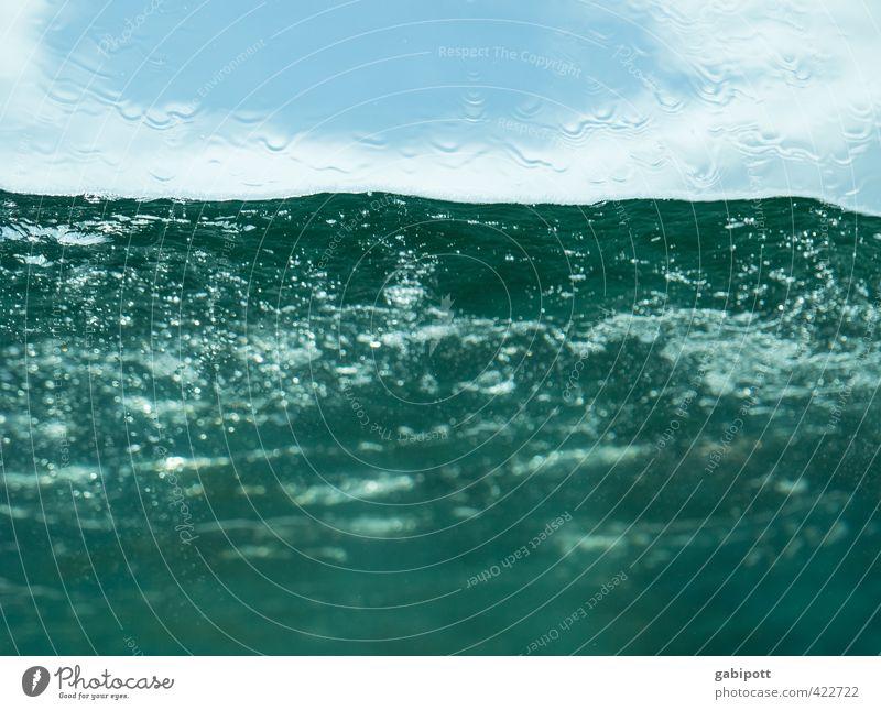 abtauchen Urelemente Wasser Wassertropfen Wellen Ostsee Meer Flüssigkeit Fröhlichkeit frisch kalt nass blau Unterwasseraufnahme Erfrischung Farbfoto