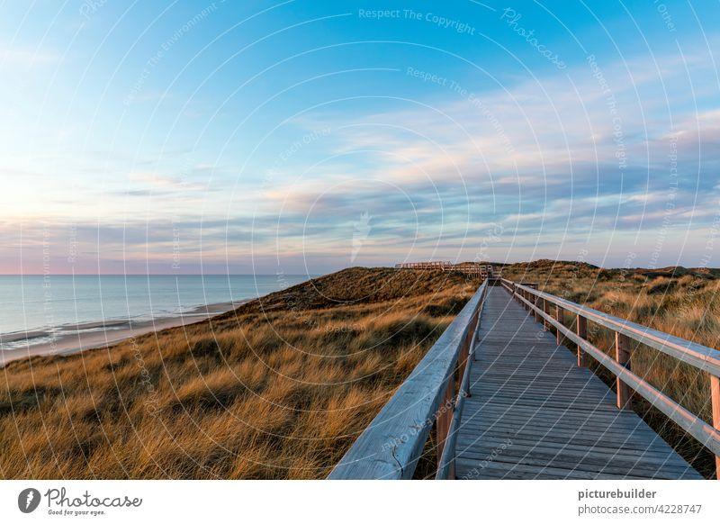Holzsteg auf den Dünen am Meer Frühling Nordsee Strand Sylt Himmel Wolken Farben Sonnenaufgang Sonnenuntergang Horizont Steg Fluchtpunkt blau Schönes Wetter