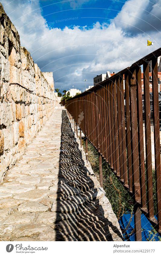 Geschichten vom Nahost-Zaun Jerusalem Palästina Außenaufnahme Farbfoto Ost-Jerusalem Religion & Glaube Wahrzeichen Tempelberg Felsendom Sehenswürdigkeit Israel
