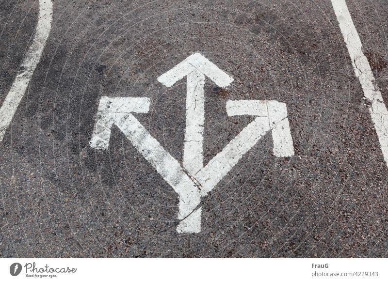 Empfehlung| nur nicht rückwärts...! Straße Asphalt Markierung Pfeile nach rechts nach links geradeaus Richtung richtungsweisend Wegzeichen Fahrbahnmarkierung