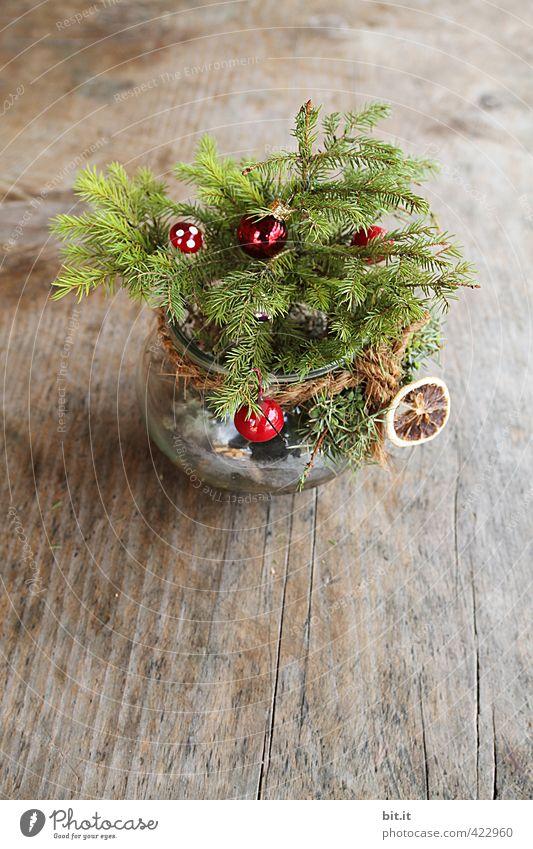 Ick gloob ick spinne | ist denn schon Weihnachten ??? schön grün Weihnachten & Advent rot Winter Holz klein Feste & Feiern natürlich braun Zufriedenheit