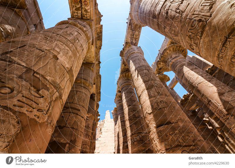 antike Statue in der Säulenhalle in Luxor in Ägypten Afrika Ägypter Antiquität Architektur authentisch blau Gebäude Kairo schließen abschließen Farbe Spalte
