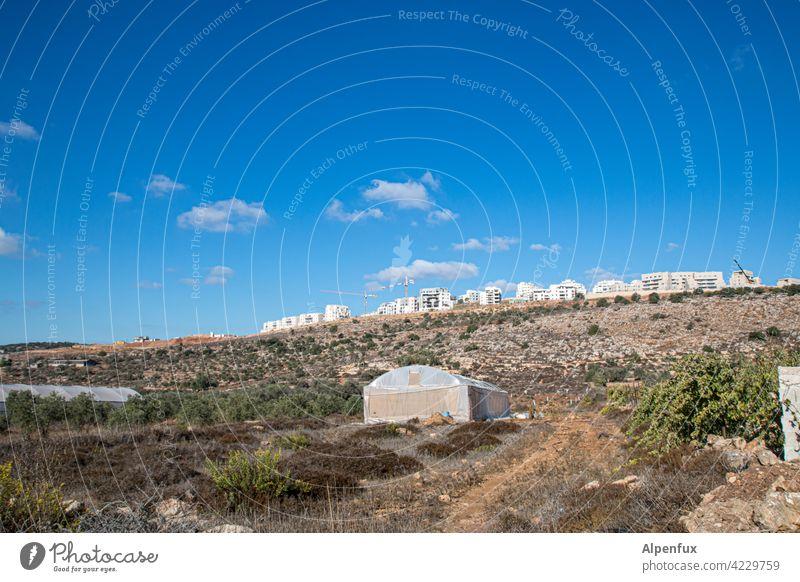 Gottgegebenes Land Palästina Siedlungsbau Israel westjordanland Außenaufnahme wohnen bauen Haus siedlung Farbfoto illegal Wohngebiet Konflikt & Streit