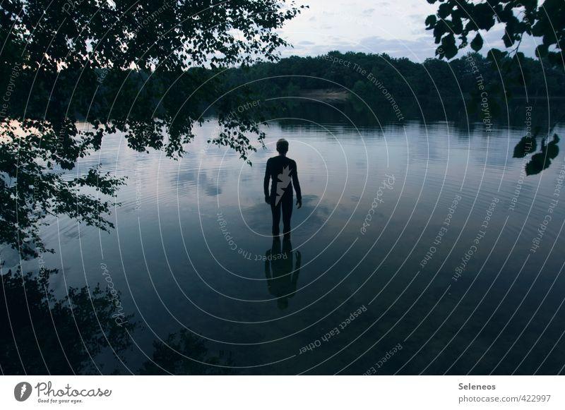 spiegelglatte See Sommer Sonne Sonnenbad maskulin Mann Erwachsene 1 Mensch Umwelt Natur Landschaft Wasser Himmel Horizont Pflanze Baum Blatt Küste Seeufer