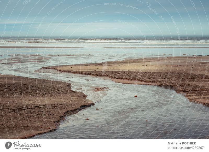 Strand an der Opalküste MEER Meer Ufer Küstenlinie Himmel Gras Wildkräuter Natur Meeresufer Landschaft Wasser reisen Tourismus Meereslandschaft malerisch