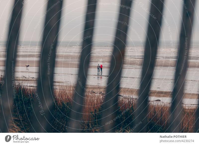 Strand mit zwei Personen und einem Hund an der Opalküste durch einen Zaun MEER Meer Ufer Küstenlinie Himmel Gras Wildkräuter Natur Meeresufer Wasser Landschaft