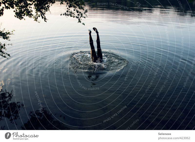 Big Fish Ausflug Abenteuer Sommer Wellen Mensch Beine Fuß 1 Umwelt Natur Landschaft Wasser Pflanze Baum Küste Seeufer Flussufer Schwimmen & Baden springen nass