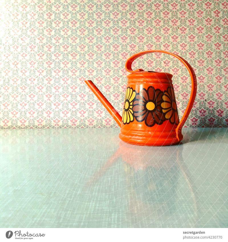 Retrospektive. Gießkanne retro retro-stil Retro-Farben Dekoration & Verzierung Farbfoto Design Stil Innenaufnahme Blume Nahaufnahme Blüte Studioaufnahme