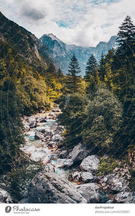 Wald mit Bergen und Soča-Tal IX Starke Tiefenschärfe Lichterscheinung Kontrast Schatten Textfreiraum Mitte Textfreiraum unten Textfreiraum rechts