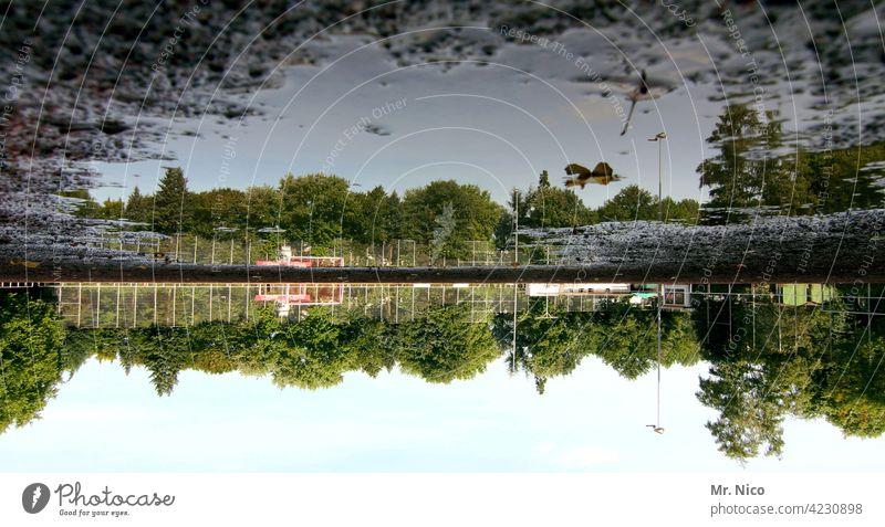 auf den kopf gestellt I oben ist unten Reflexion & Spiegelung Pfütze Wasser Umwelt Himmel Regenwasser matschig Matsch Sportplatz Bäume nass Natur unbespielbar