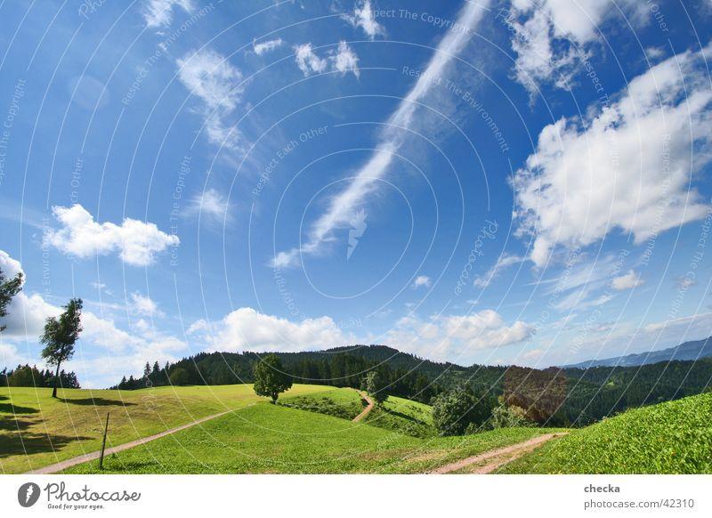 Bilderbuchlandschaft Freizeit & Hobby Ferien & Urlaub & Reisen Sommer Sonne Berge u. Gebirge Landschaft Himmel Wolken Wiese Wald frisch blau Freude Glück