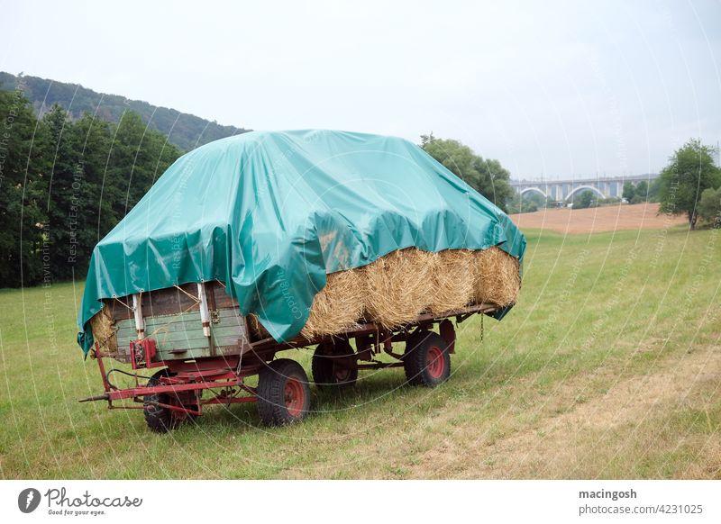 Heuwagen auf einem Feld Stroh Landwirtschaft Agrarwirtschaft Landschaft Außenaufnahme Ernte Erntedankfest Ackerbau Bauernhof Natur Wiese Anhänger Umwelt Kipper