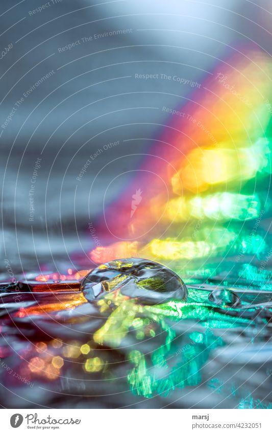 Reine, klare Wassertropfen beleuchtet durch einen knalligen Regenbogen Reflexion & Spiegelung Tropfen Lichtbrechung Lichterscheinung Experiment Farbfoto